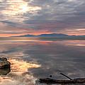 Willard Bay by Gina Herbert