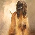 Willem Van Oranje by Diane Chandler