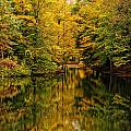 Willett Autumn Reflections by Don Dennis