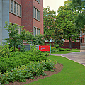 Williams Hall - Nc State Main Campus by Paulette B Wright