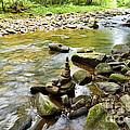 Williams River Headwaters Zen Rocks by Thomas R Fletcher