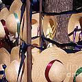Williamsberg Hats by Dan Hartford