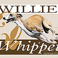 Willie The Whippet by Liane Weyers