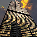 Willis Sears Tower by Thomas Woolworth