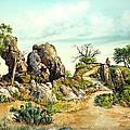 Willow Loop Overlook by Robert W Cook