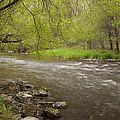 Willow River 3 by John Brueske