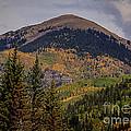 Wilson Peak Colorado by Janice Pariza