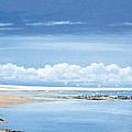 Winchelsea Gulls by Steve Crisp
