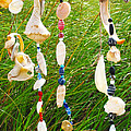 Wind Chimes At The Beach by Michelle Constantine