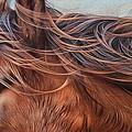 Wind In The Mane by Elena Kolotusha