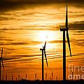 Wind Turbine Farm Picture Indiana Sunrise by Paul Velgos