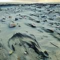 Windblown Beach by Holly Dwyer