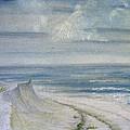 Windblown by Judy Hall-Folde