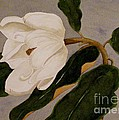 Windblown Magnolia by Nancy Kane Chapman