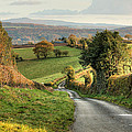 Winding English Country Lane by Sarah Broadmeadow-Thomas
