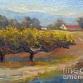 Winding Road by Carolyn Jarvis