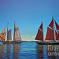 Windjammers  At A Maine Harbor by Nicola Fiscarelli