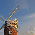 Windmill At Dusk On The Norfolk Broads In Autumn by Louise Heusinkveld
