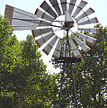 Windmill by Barbara Snyder