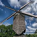 Windmill by Brothers Beerens
