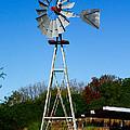 Windmill by Carol Tsiatsios