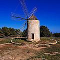 Windmill In El Pilar De La Mola On Formentera by Karol Kozlowski