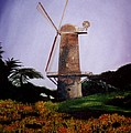 Windmill In Golden Gate Park by Alexandra Louie