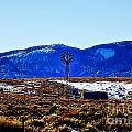 Windmill In The Snow by Douglas Barnard