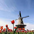 Windmill Island Gardens by Patrick Shupert