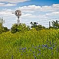Windmill by Mark Alder