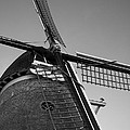 Windmill by Miguel Winterpacht