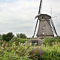 Windmill Of Kinderdijk by Ivy Ho