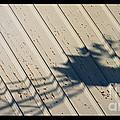 Windmill Shadows by Brian  Seidenfrau
