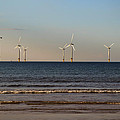 Windmills In The Sea by Scott Lyons