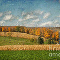 Windmills On The Horizon by Lois Bryan