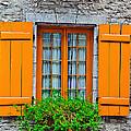 Window by ALI Gohar