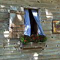 Window And Flowerbox by Gordon Elwell