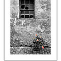 Window And Flowers Poster by Mike Nellums