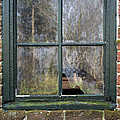 Window At Abbott's Mill by Brian Wallace