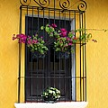 Window At Old Antigua Guatemala by Kurt Van Wagner