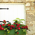 Window Box by Paul W Faust -  Impressions of Light