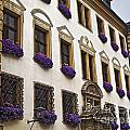 Window Boxes In Germany by Howard Stapleton