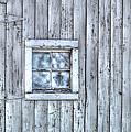 Window by Juli Scalzi