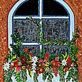 Window Flower Box On A Stucco Wall by Barbara Griffin
