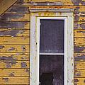 Window In Abandoned House by Jill Battaglia