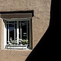 Window by Jim Jones