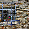 Window Of Vernazza Italy Dsc02629 by Greg Kluempers