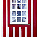 Window On Stripes by Carlos Caetano