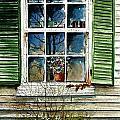 Window Reflections by Steven Schultz
