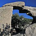 Window Rock by Ed  Riche